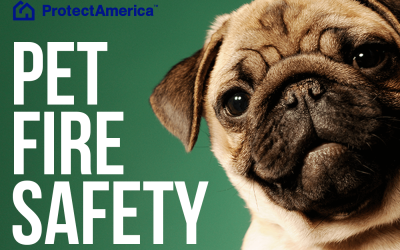 Pet Fire Safety from Protect America